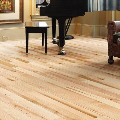 Mystic Maple 3-1/4 Solid Maple Hardwood Flooring in Julian