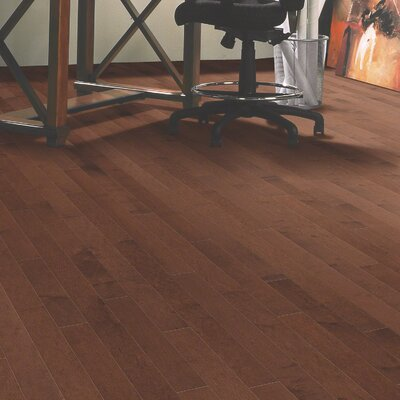Mystic Maple 3-1/4 Solid Maple Hardwood Flooring in Fayette