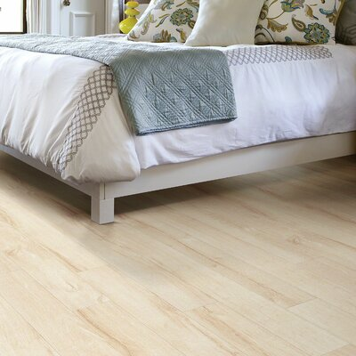Boardwalk 5 x 48 x 10mm Laminate Flooring in Avenue