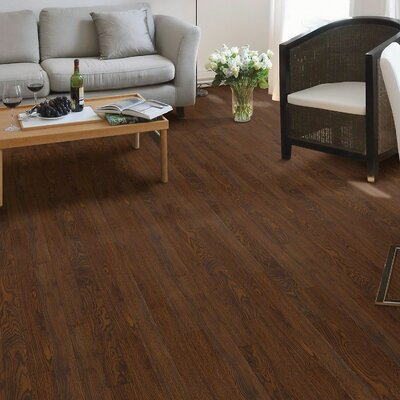 Maestro 4 x 48 x 8mm Laminate Flooring in Solo