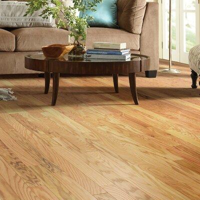 Lakeland 3-1/2 Engineered Red Oak Hardwood Flooring in Wiggins
