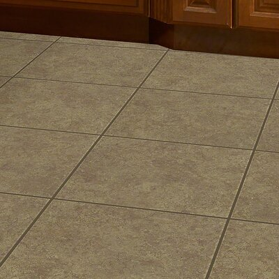 Desnon 18 x 18 Ceramic Field Tile in Rita