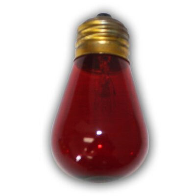 11W Incandescent Light Bulb Color: Red