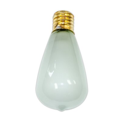 7W Frosted E26 Incandescent Vintage Filament Light Bulb