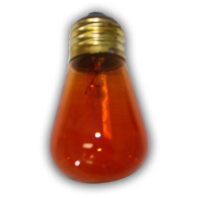 11W Incandescent Light Bulbs (Set of 12) Color: Amber