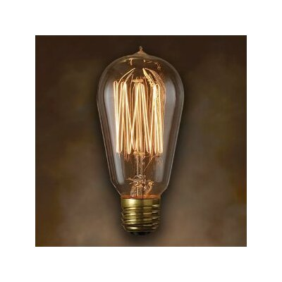 Incandescent Light Bulb (Pack of 6)