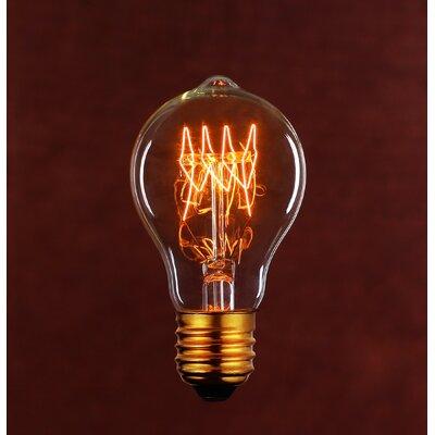 40W Light Bulb