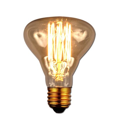 40W Antique Light Bulb