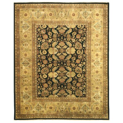 Tabriz New Zealand Hand-Knotted Black/Ivory Area Rug