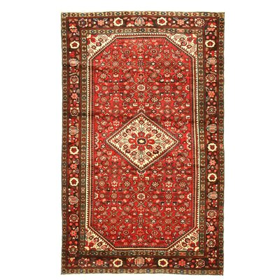 Hosseinabad Red Hand Knotted Area Rug