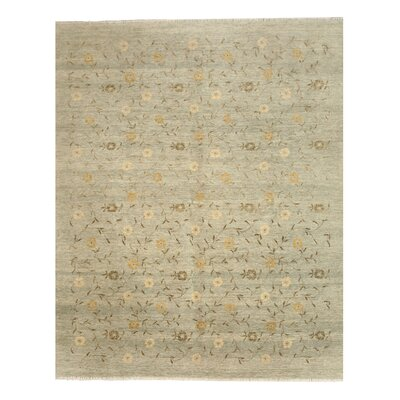 Jaipur Hand-Knotted Gray Area Rug