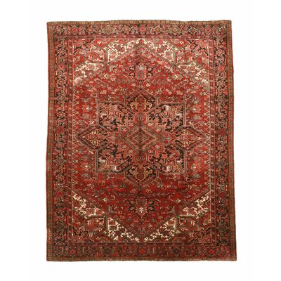 Aren Hand-Knotted Rust Area Rug