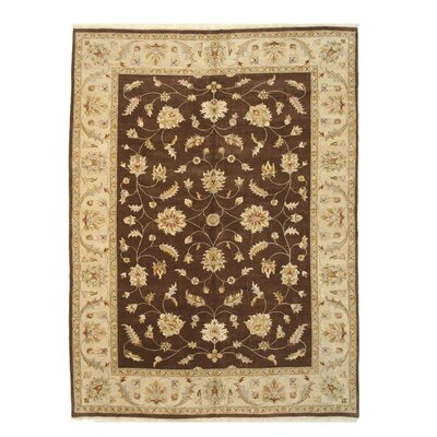 Agra Hand-Knotted Brown/Beige Area Rug