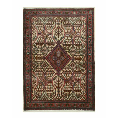 Abadeh Hand-Knotted Red/Ivory Area Rug