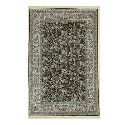 Sino-Persian Hand-Knotted Black/Green Area Rug