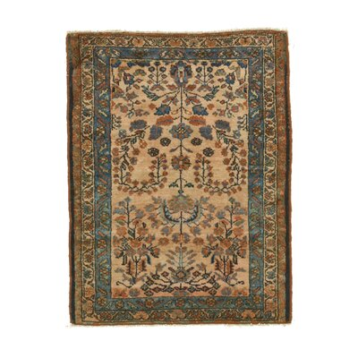 Lilihan Hand-Knotted Brown/Beige Area Rug