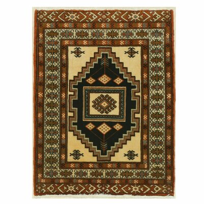 Turkman Hand-Knotted Brown/Ivory Area Rug