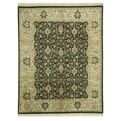 Ziegler Hand-Knotted Black Area Rug Rug Size: Rectangle 75 x 95