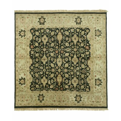 Ziegler Hand-Knotted Black Area Rug Rug Size: Square 8
