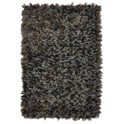 Guimauve Ebony Sable Shag Grey Area Rug Rug Size: 4' x 6'