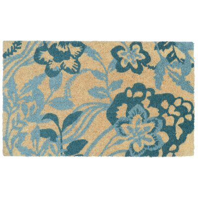 Bayridge Doormat Color: Turquoise