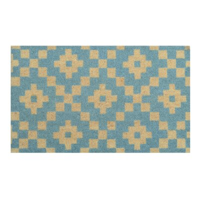 Arnold Doormat Color: Turquoise
