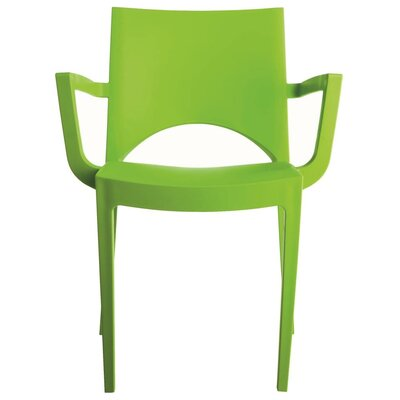 Paris Arm Chair Finish: Green