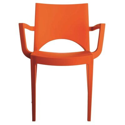 Paris Arm Chair Finish: Orange