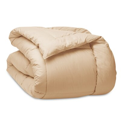 Cloud Down Alternative Cotton Comforter Size: King, Color: Khaki