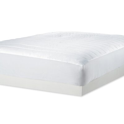 Dream Cotton Mattress Pad Size: Queen