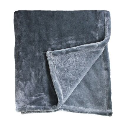 Bliss Velvet Fleece Blanket Size: Twin / Twin XL, Color: Charcoal