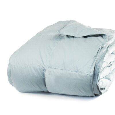 Cloud Heavyweight Down Alternative Comforter Size: Twin / Twin XL, Color: Juniper Blue