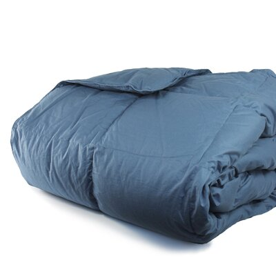 Cloud Heavyweight Down Alternative Comforter Size: Twin / Twin XL, Color: Rock Blue