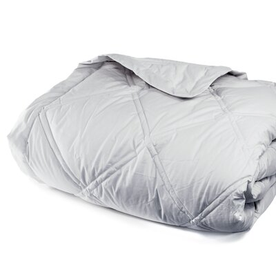 Down Alternative Diamond Cotton Shell Blanket Size: Full / Queen, Color: Cloud Gray