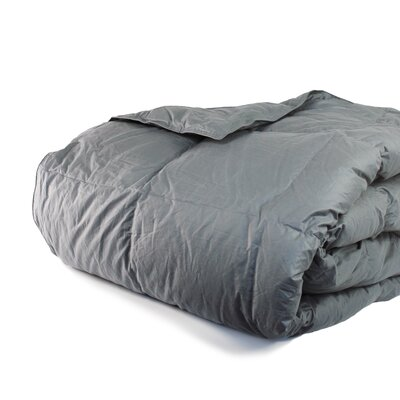 Cloud Heavyweight Down Alternative Comforter Size: Twin / Twin XL, Color: Charcoal Gray