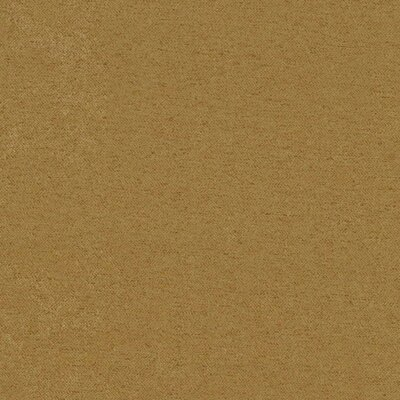 Queen 8 Micro Suede Futon Mattress Color: Java