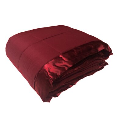 Cartee Down Alternative All Seasons Blanket with Satin Trim Size: Full/Queen, Color: Burgundy