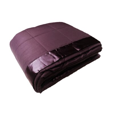 Down Alternative All Seasons Blanket with Satin Trim Size: Twin, Color: Violet