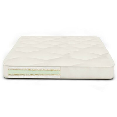 Back Care Plus 9 Soy Foam Futon Mattress Size: Twin