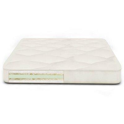 Back Care Plus 9 Soy Foam Futon Mattress Size: Queen