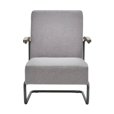Amak Armchair Upholstery: Gray