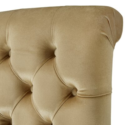 Daina Rolled Top Tufted Solid Wood Dining Chair Upholstery: Golden Velvet