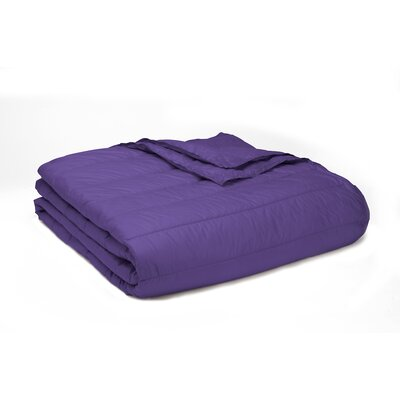 Ultra Light Down Alternative Indoor/Outdoor Nlon Blanket Size: Full/Queen, Color: Purple