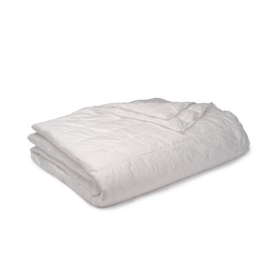 Ultra Light Down Alternative Indoor/Outdoor Nlon Blanket Color: White, Size: Twin