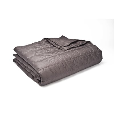 Ultra Light Down Alternative Indoor/Outdoor Nlon Blanket Size: Twin, Color: Pewter