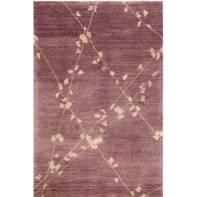 Hand-Tufted Assorted Area Rug