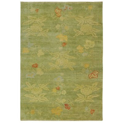 Martha Stewart Kimono Edamame Area Rug Rug Size: Rectangle 6 x 9