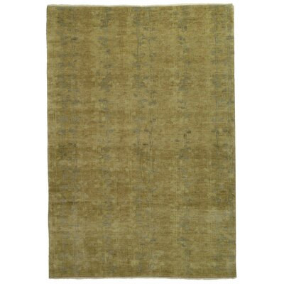 Martha Stewart Tendrils Sunrise Area Rug Rug Size: Rectangle 4 x 6