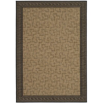 Martha Stewart Byzantium Dark Greek Key Beige/Black Indoor/Outdoor Area Rug Rug Size: Rectangle 53 x 77