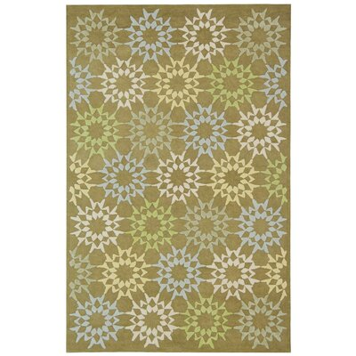 Martha Stewart Hand-Hooked Cotton Pebble/Gray Area Rug Rug Size: Rectangle 5'6